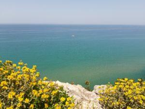 Zatoka Patraska