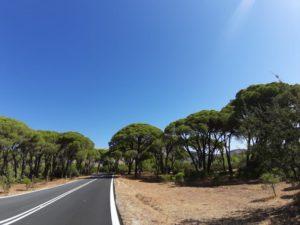 Droga do Kalogrii